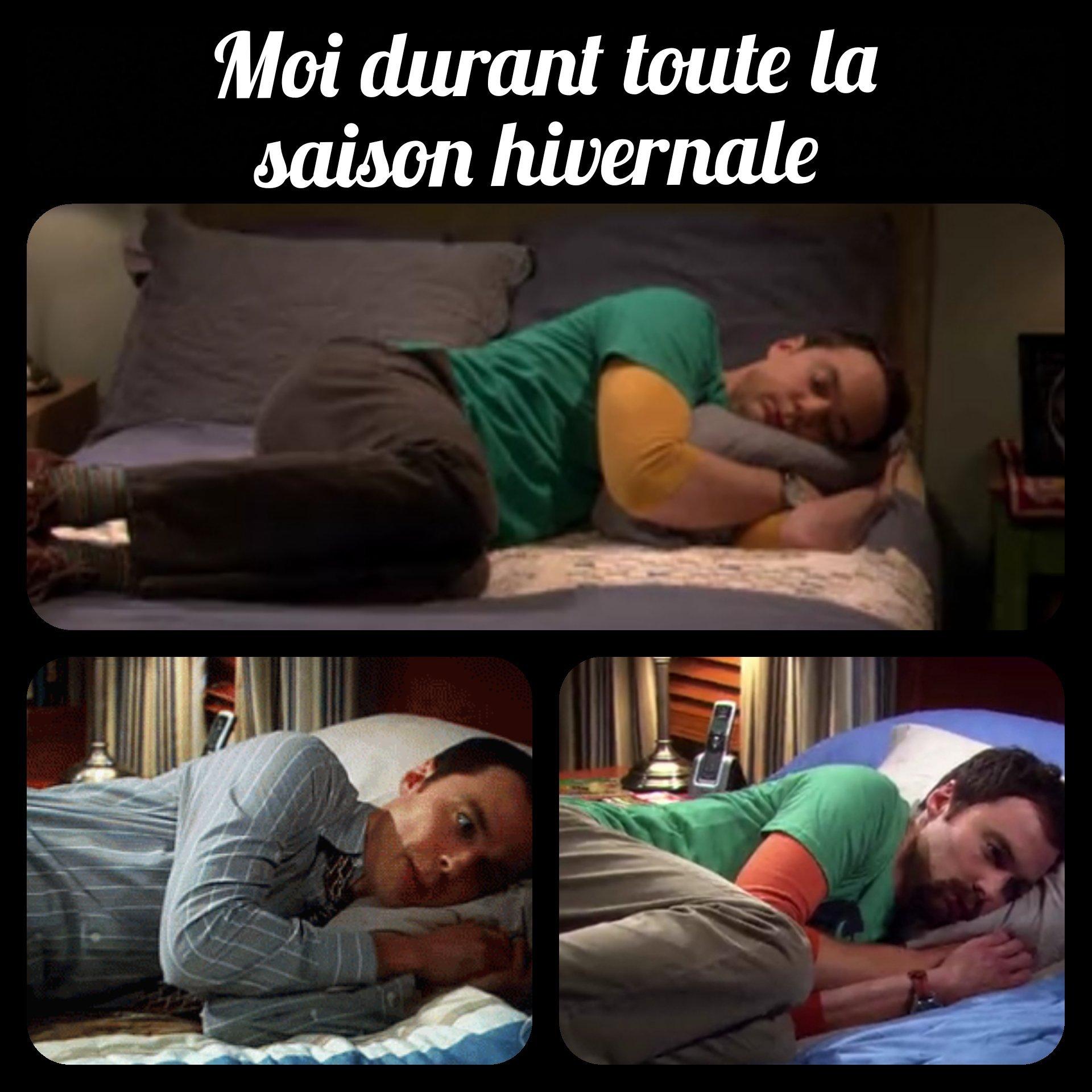 Hibernation - meme