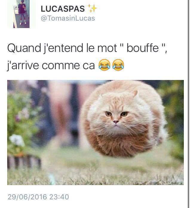 """""""Bouffe"""" - meme"""