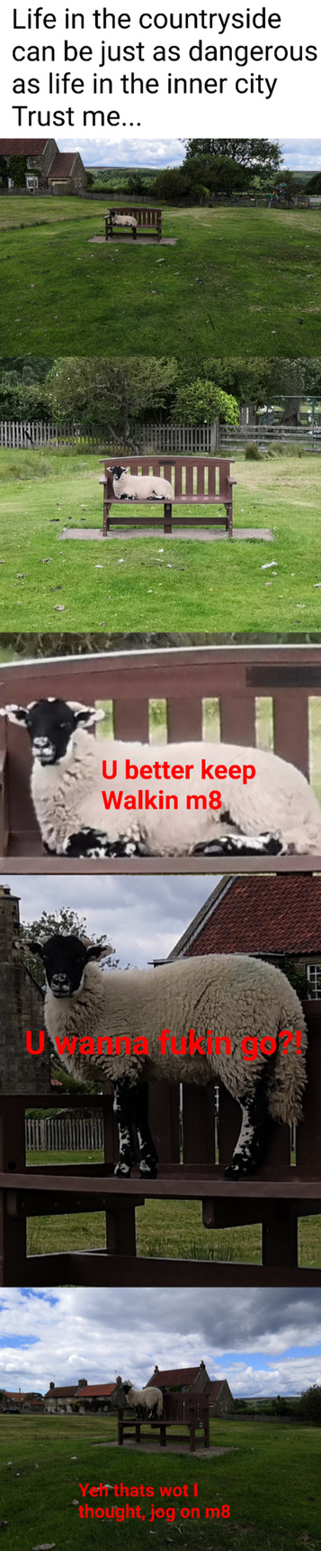 Yorkshire is a Savage place, best believe - meme