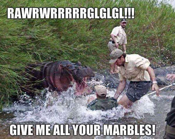 Hungry hungry hippos level: extreme - meme