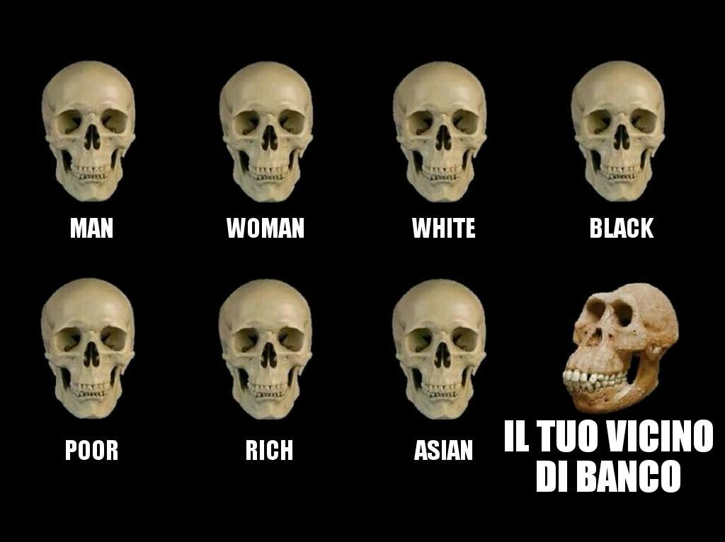 Povero - meme