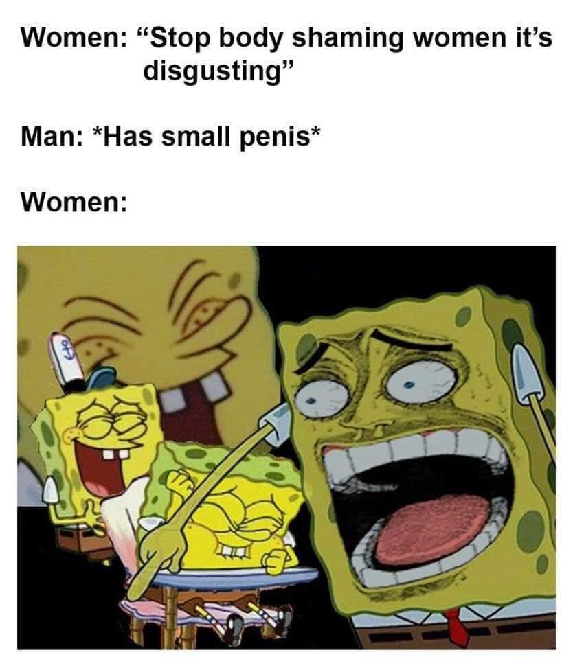 StOp BoDy ShAmInG - meme