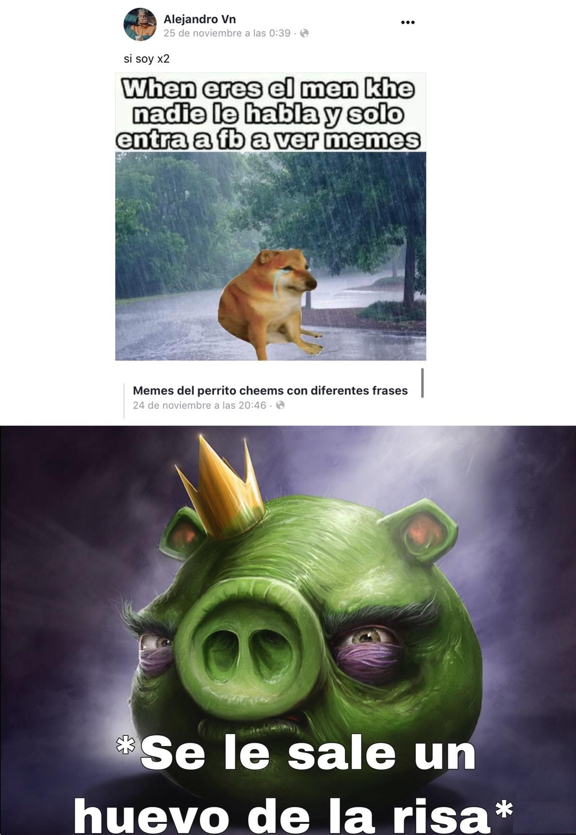 Plantilla del cerdo pero en mejor resolución - meme