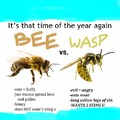 Friendly Bee vs A Fucking Wasp