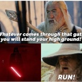 hopefully Gandalf doesn't get bent over by Vader. but he might like it actually
