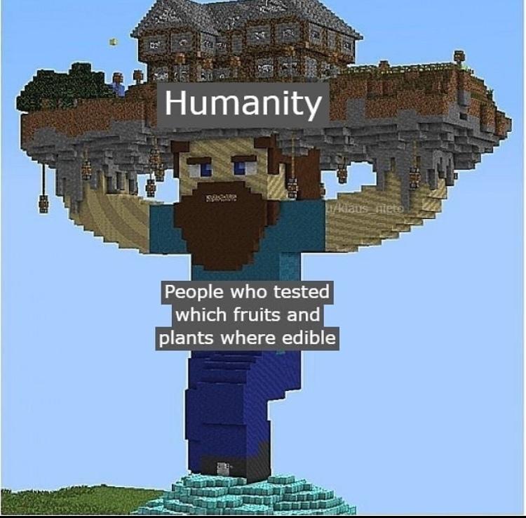 yummy or death berries - meme