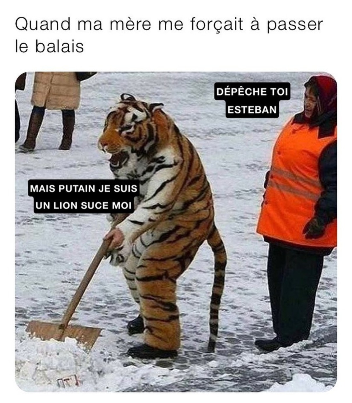 Tigrou...le lion - meme