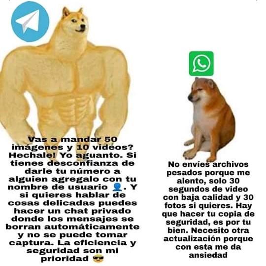 Chad telegram - meme