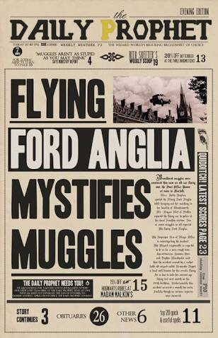 mystified muggles - meme