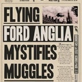 mystified muggles