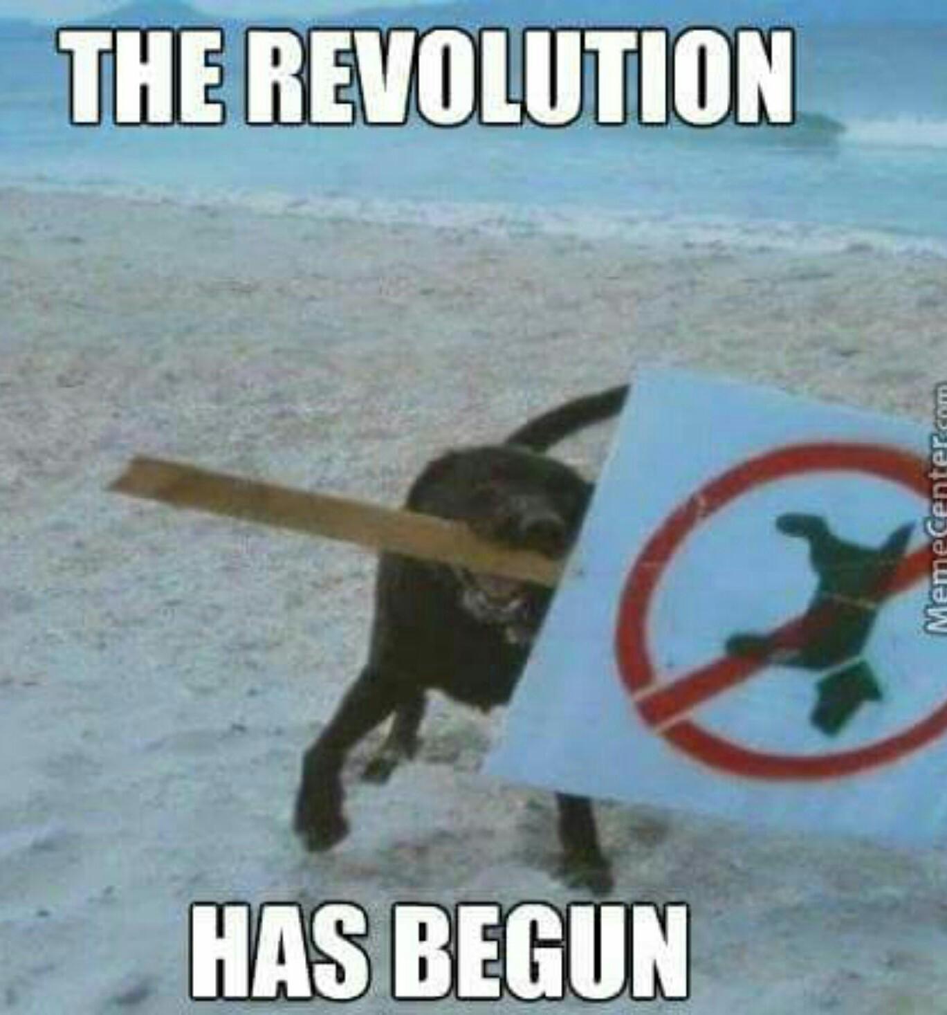 Doggo Revolution - meme