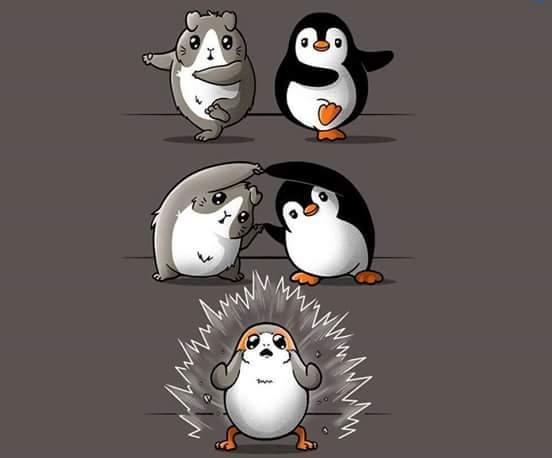 Hamster + Pinguin - meme