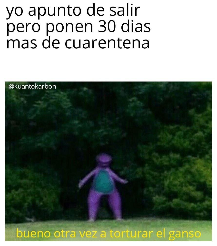 Varni morido - meme