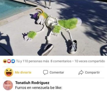 Furro Venezolano - meme