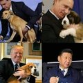 Todos amam os doguinhos