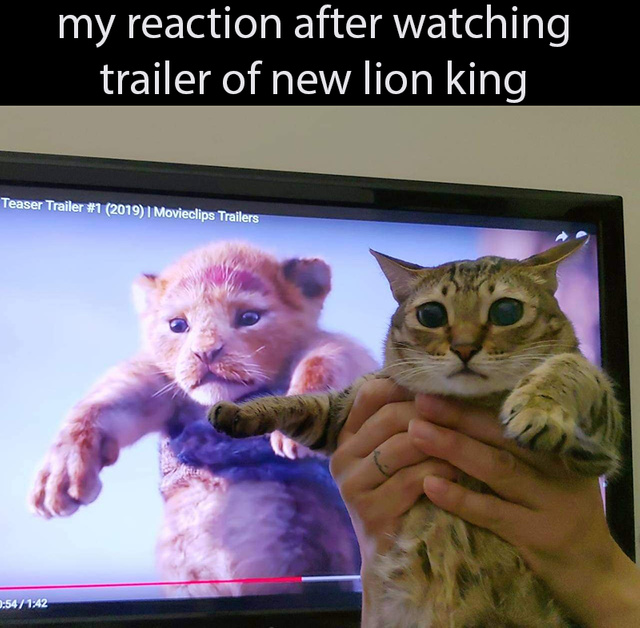 My reaction after watching trailer of new Lion King - meme