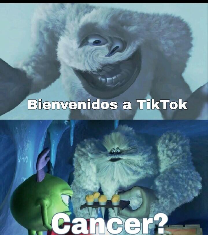 TikTok - meme