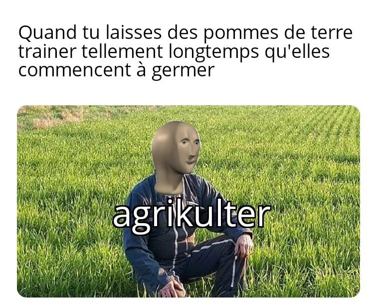 Patates>>all - meme
