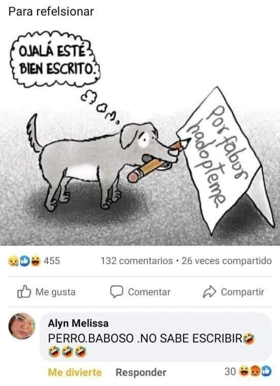 che perro - meme