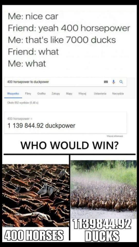 Duckpowah - meme