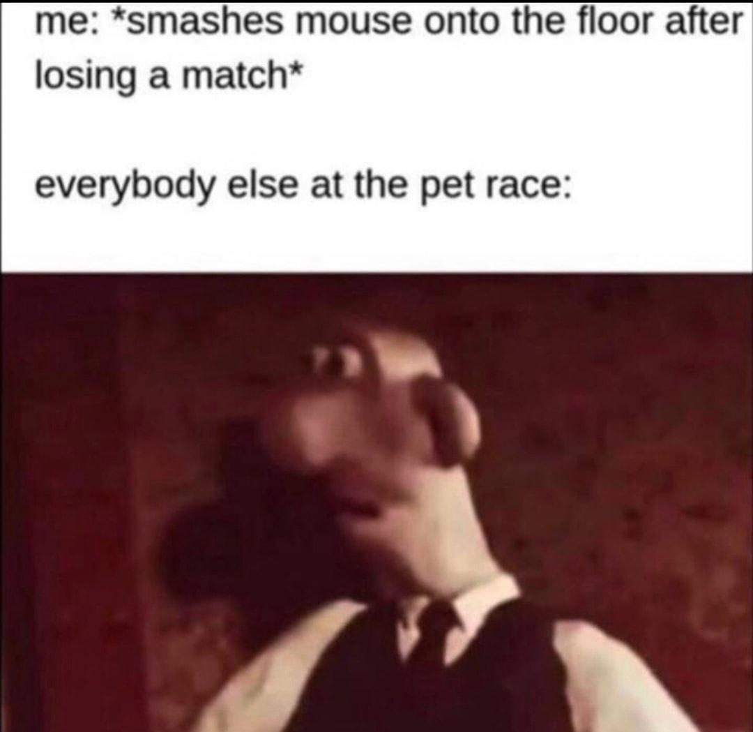 poor mouse - meme
