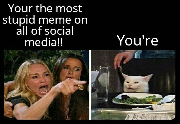 Grammer Nazis... - meme