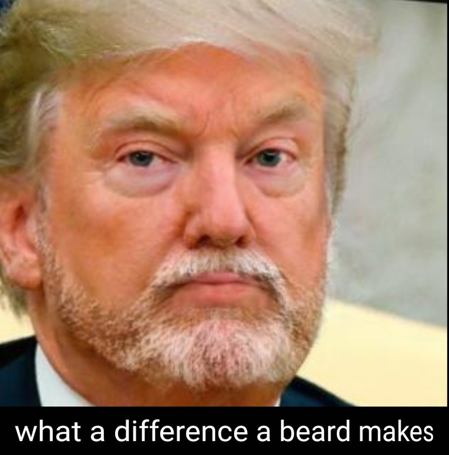 Make american beard again - meme