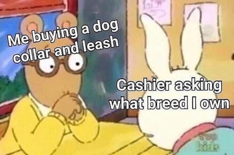Bulldog + shitzu = ? - meme