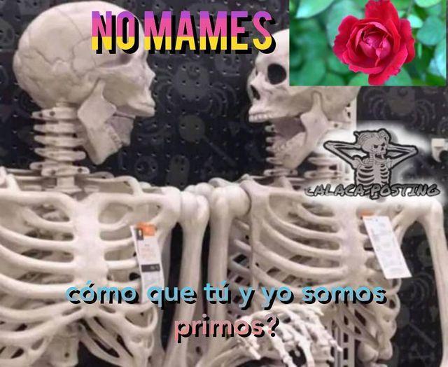 cojan - meme