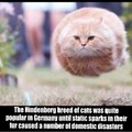 The Hydrogen breeds were never as safe as their Helium cousins!