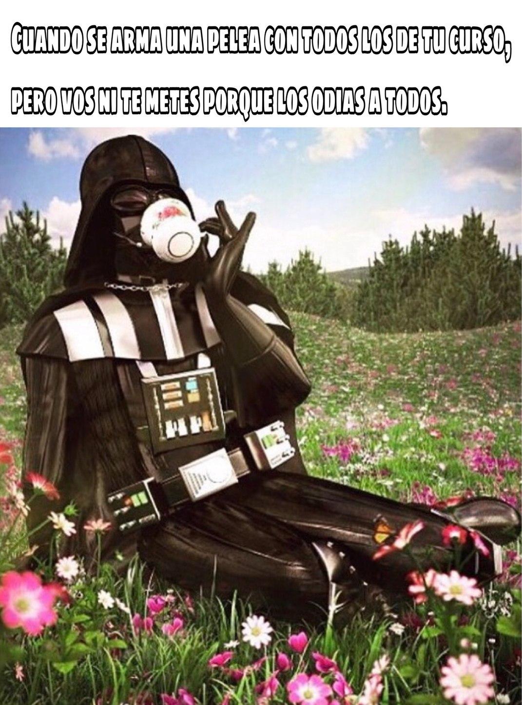 Una terrible flor de Vader - meme