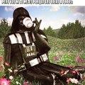 Una terrible flor de Vader