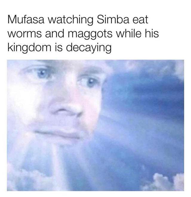 Mufasa watching Simba eat worms and maggots while his kingdom is decaying - meme