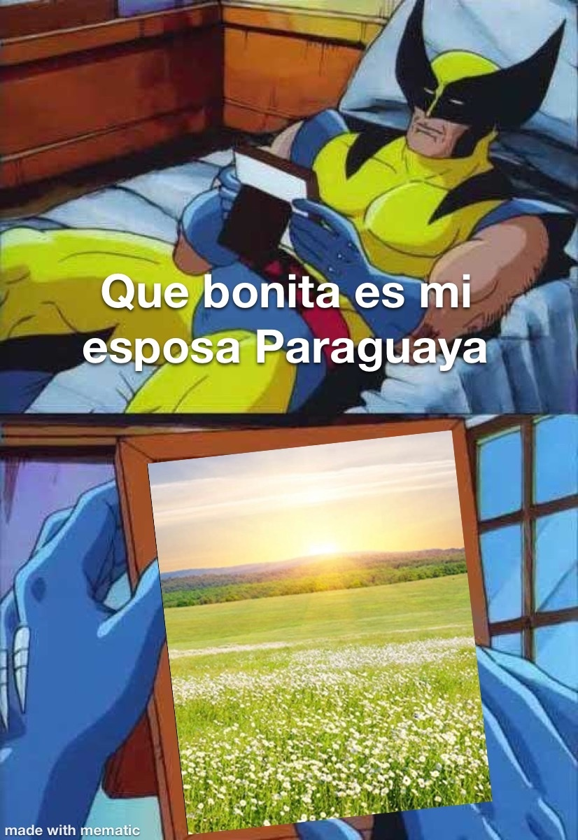 Paraguay es un invento del gobierno para ocultar el area 5,2 - meme