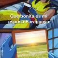 Paraguay es un invento del gobierno para ocultar el area 5,2