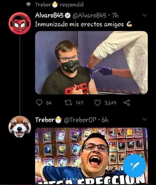 ereccion - meme