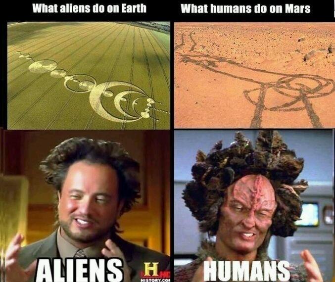 Haa les humains - meme