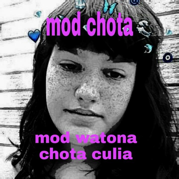funada chota - meme