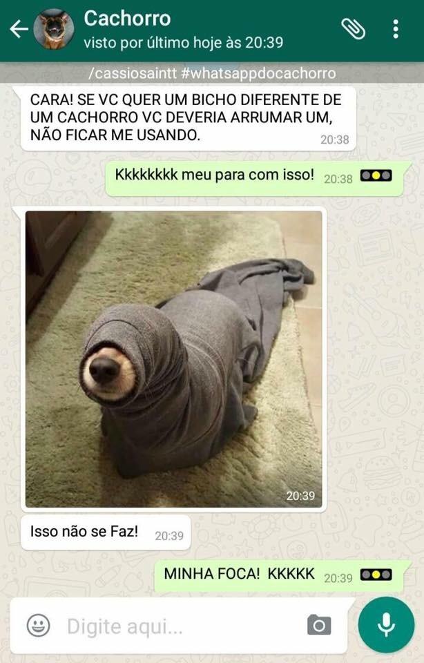 catchuro pt2 - meme