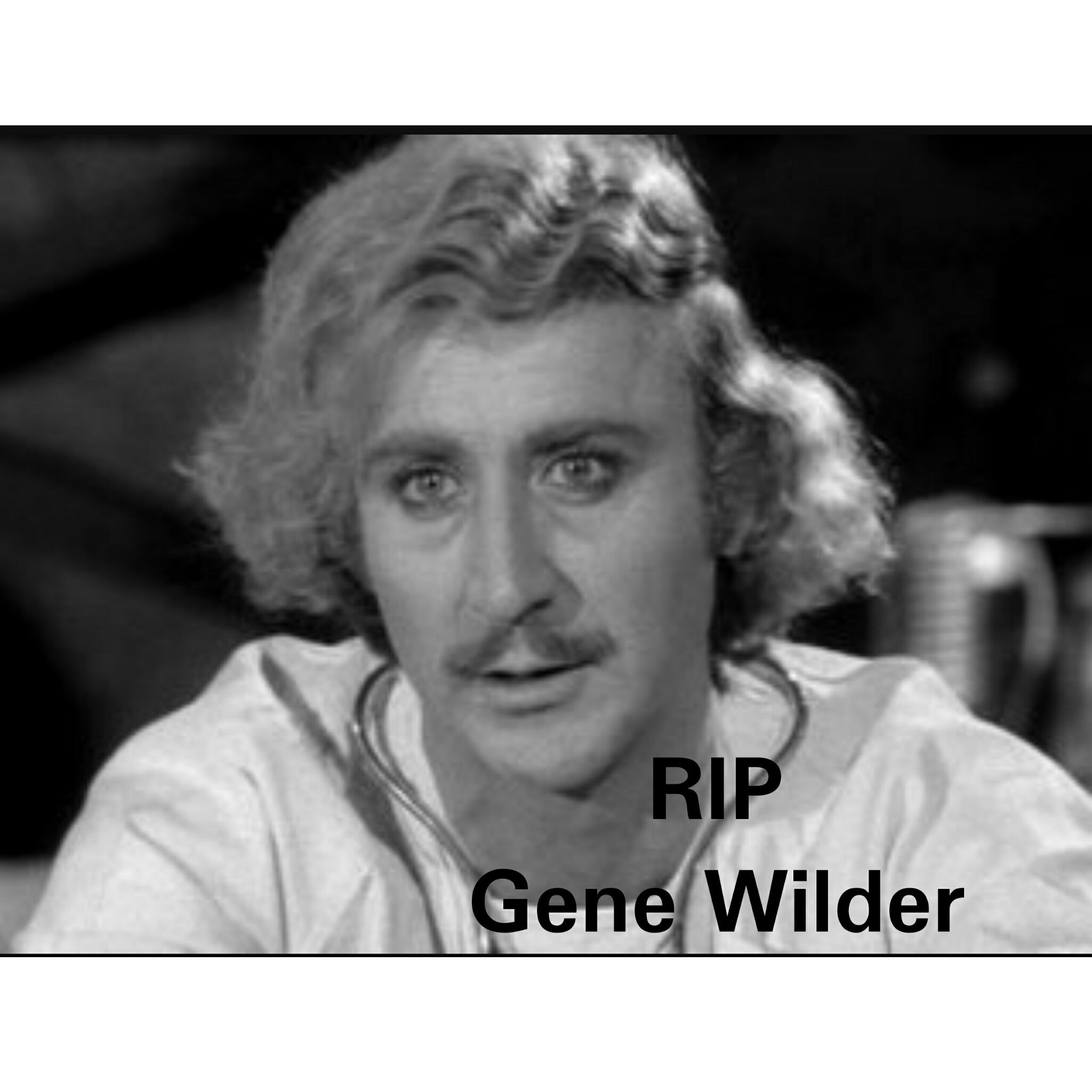 57c4d982ce808 young frankenstein! meme by primusgirl ) memedroid