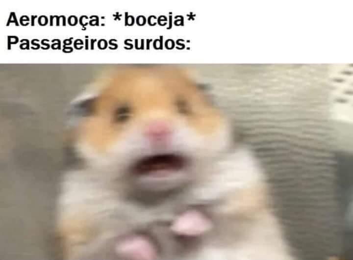 AAAAAAAAAAAAAAA - meme