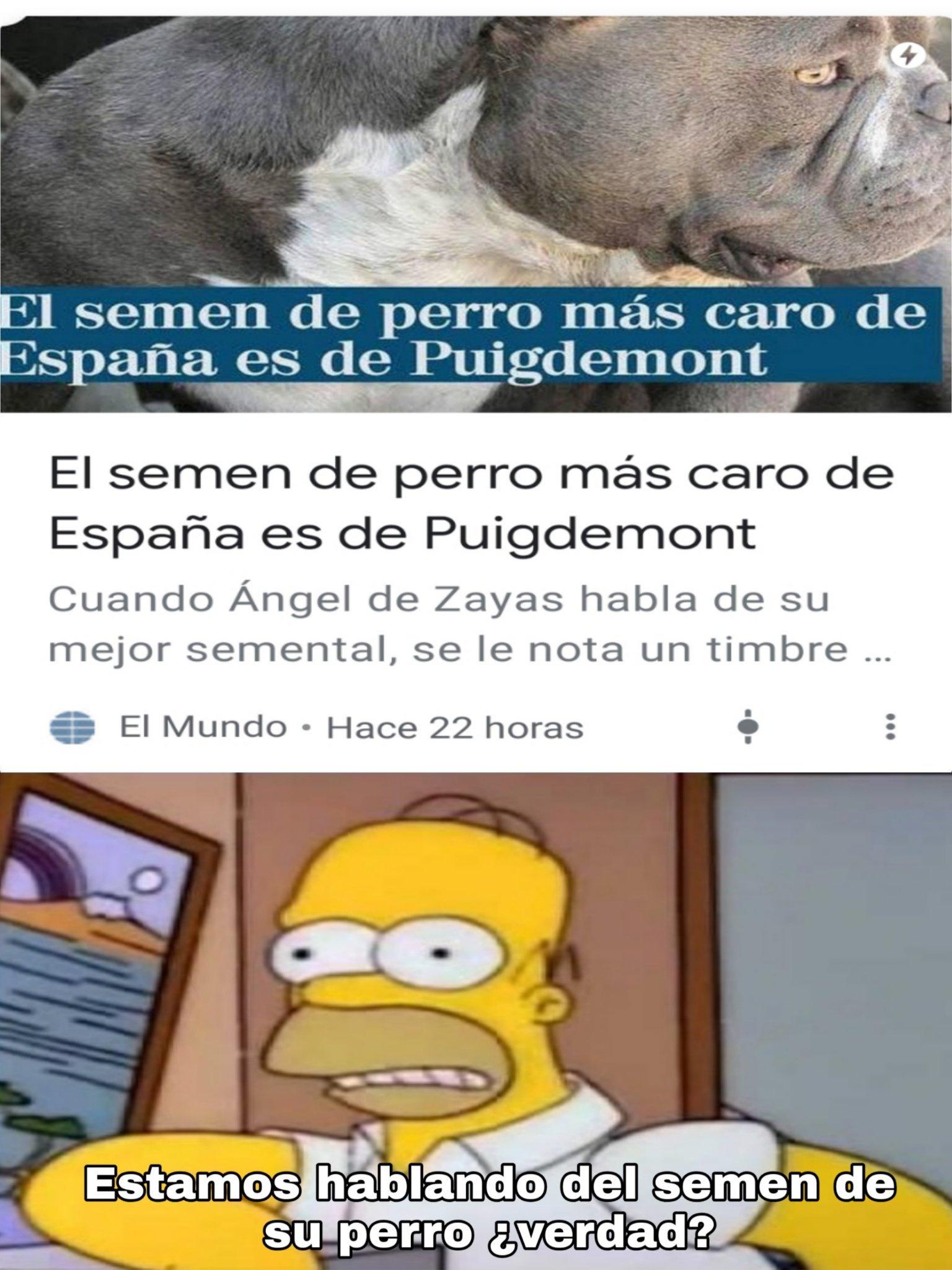 El semen de Puigdemont es el semen de perro más caro. - meme