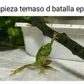La rana ninja