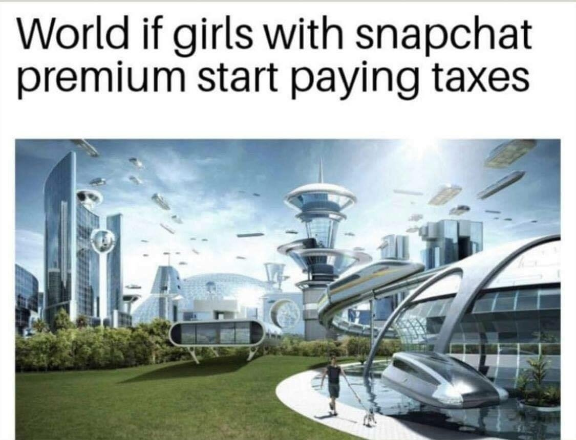 tax evasion is a dumb thing to go to prison for - meme