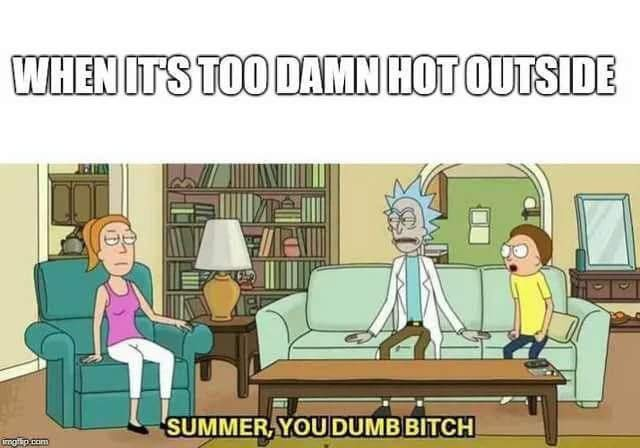 When summer hits this year - meme