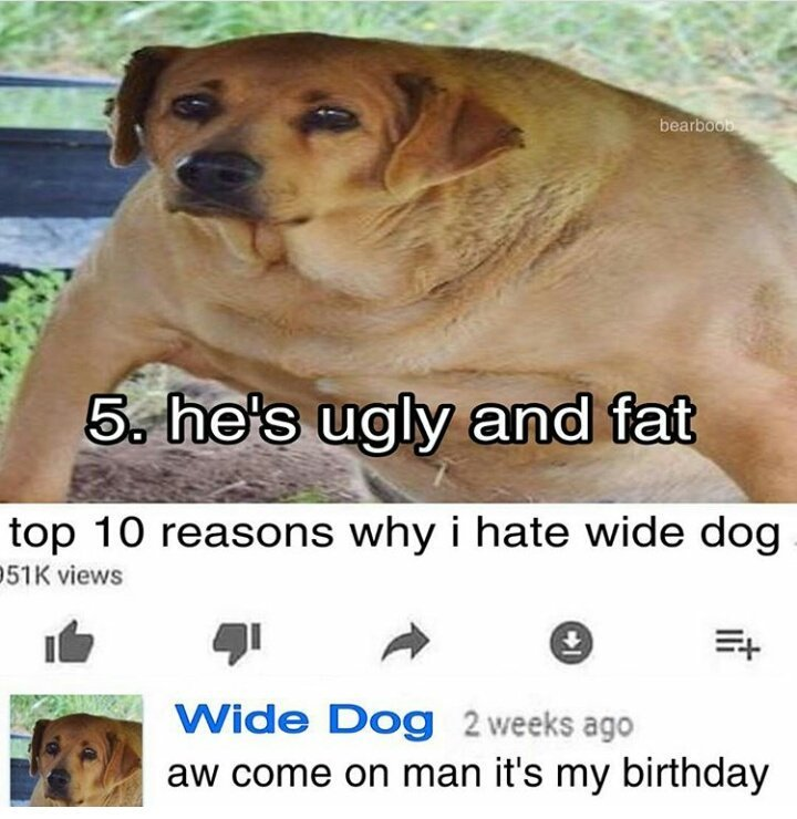 Wide dog is a cunt - meme