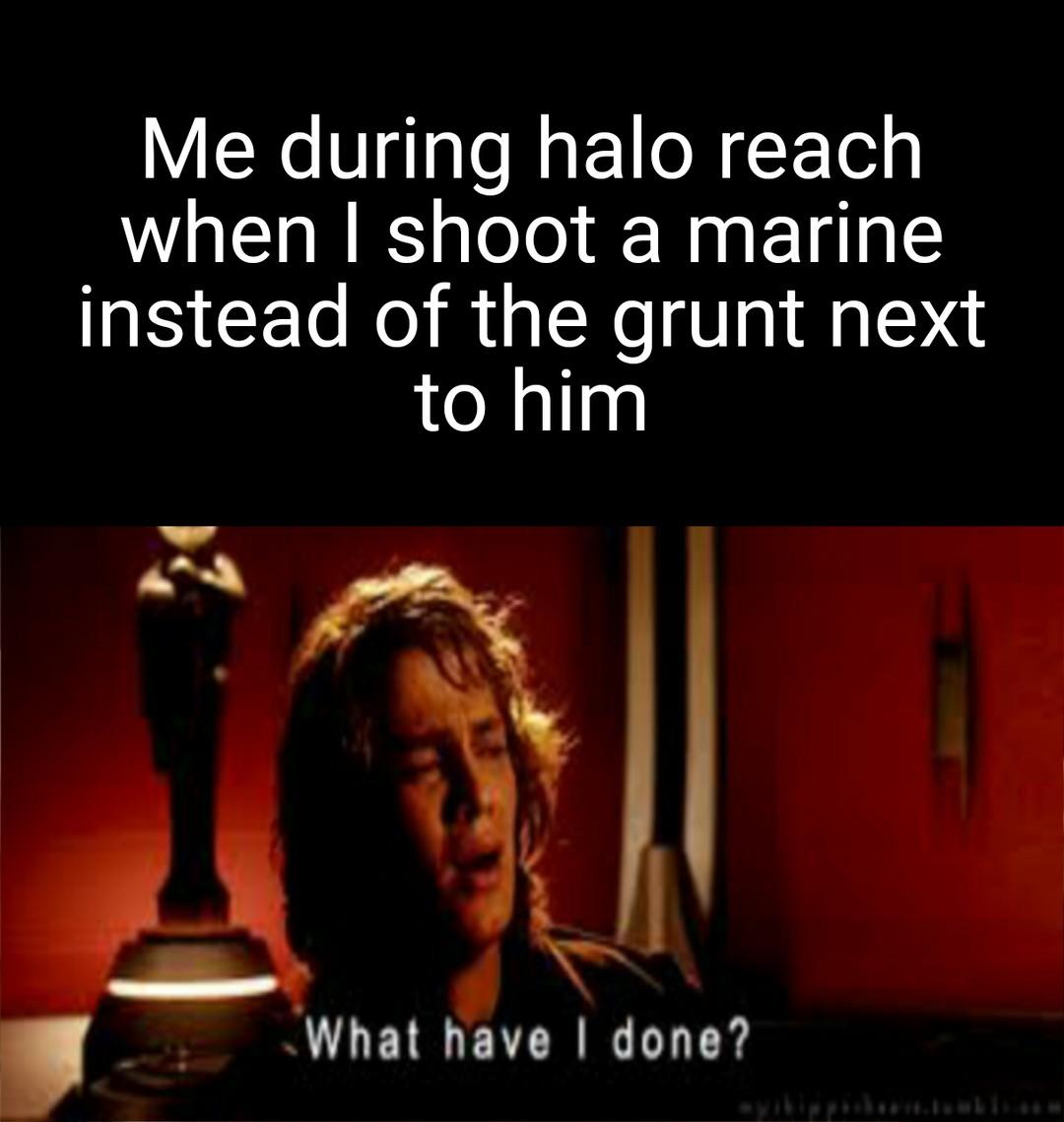 NOOOOOOOOOOOOOOO - meme