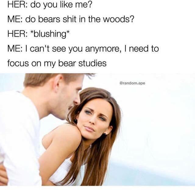 Bart the bear - meme