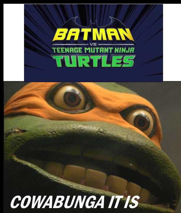 Batman vs TMNT movie announced - meme