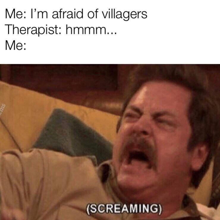 *minecraft villager sound* - meme